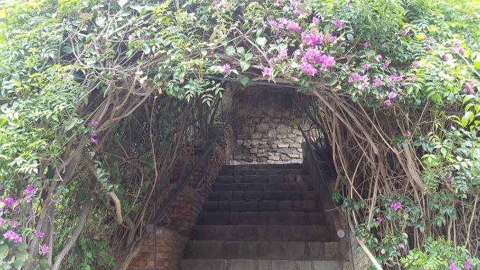 jardines del umbral.jpg